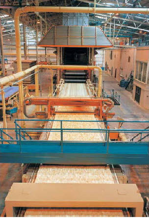 Особенности технологии производства ОСП (OSB) панелей (плит)